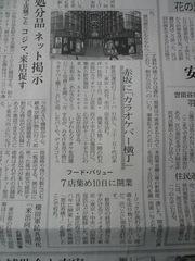 2009 04 05-1.JPG