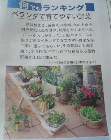 2009 04 12-13.JPG