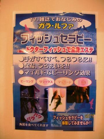 2009 05 05-10.JPG