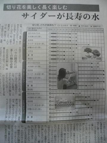 2009 05 17-3.JPG