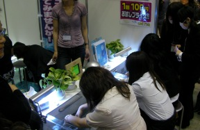 blog20110211-11.JPG