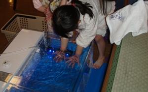 blog20110313-5.JPG
