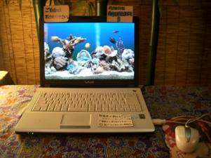 blog20110412-1.JPG
