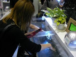 blog20110518-5.JPG