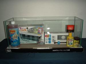 blog20110806-1.JPG