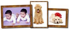 pet_child.jpg